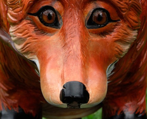 Fox-main